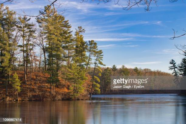 scenic view of lake in forest against sky during autumn - kalamazoo stock pictures, royalty-free photos & images
