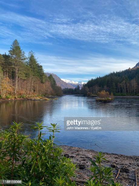 scenic view of lake in forest against sky - scotland stock pictures, royalty-free photos & images