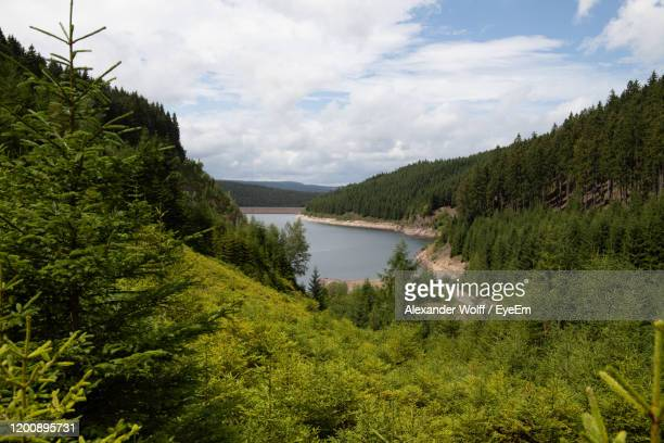 scenic view of lake in forest against sky - テューリンゲン州 ストックフォトと画像