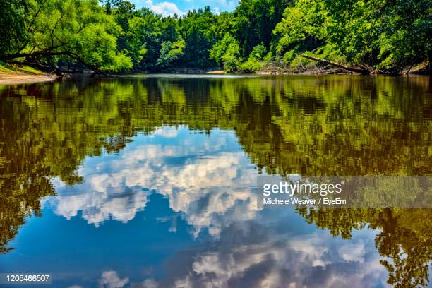 scenic view of lake in forest against sky - michele weaver stock pictures, royalty-free photos & images