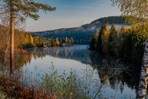 Scenic view of lake in forest against sky,Buskerud,Norway