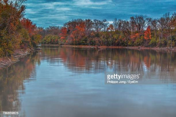 Scenic View Of Lake In Forest During Autumn