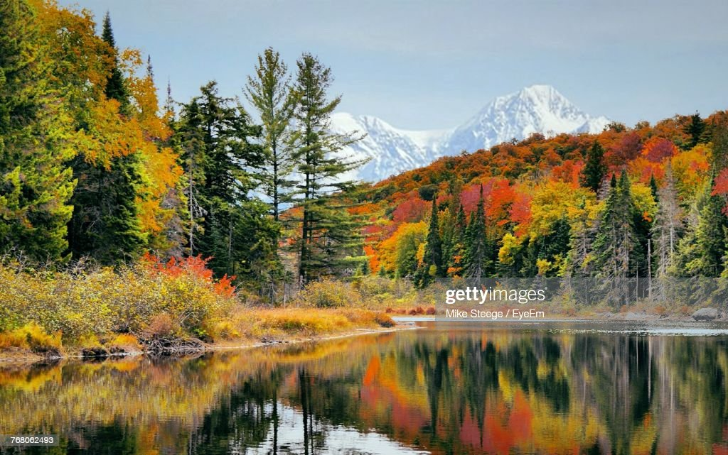 Scenic View Of Lake In Forest During Autumn : Stock Photo