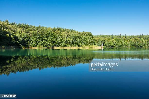 Scenic View Of Lake In Summer
