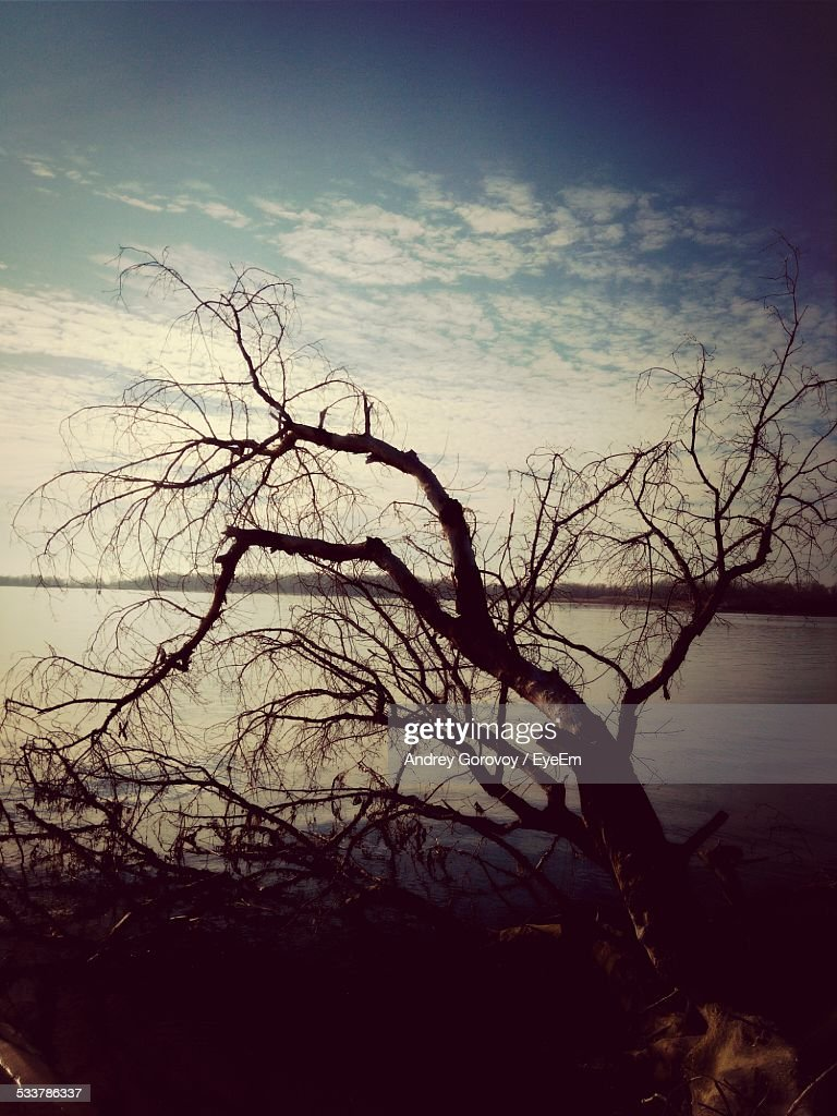 Scenic View Of Lake : Foto stock