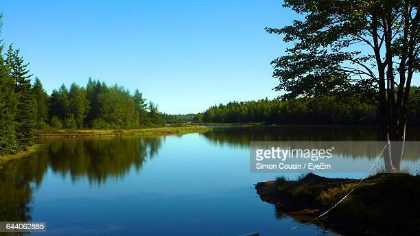 scenic view of lake - moncton stock photos and pictures