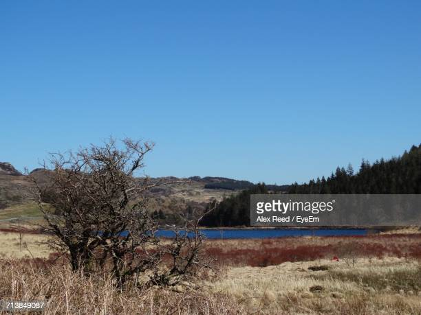 Scenic View Of Lake Sea Against Clear Blue Sky