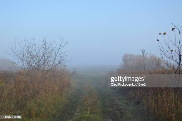 scenic view of land against clear sky - oleg prokopenko stock pictures, royalty-free photos & images
