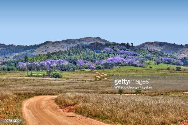 scenic view of land against clear sky - swaziland fotografías e imágenes de stock