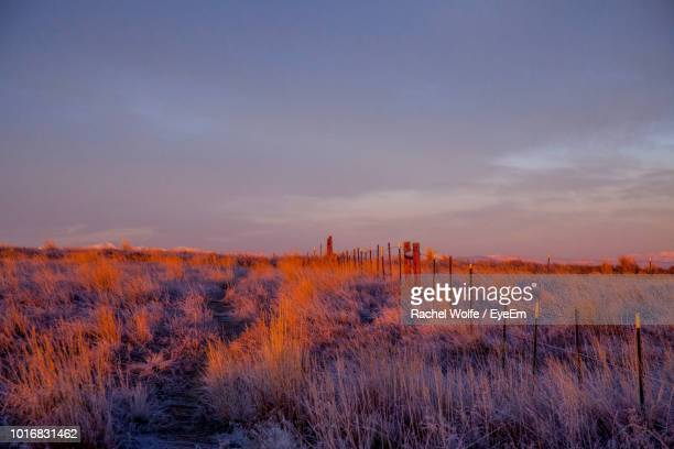 scenic view of land against sky during sunset - rachel wolfe stock pictures, royalty-free photos & images