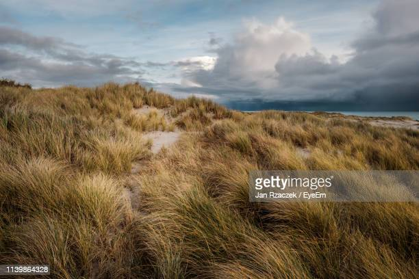 scenic view of land against sky - helgoland stock pictures, royalty-free photos & images