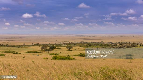 scenic view of land against sky - semi arid stock pictures, royalty-free photos & images