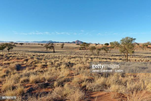 scenic view of land against sky - prairie stock photos and pictures