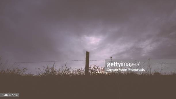 Scenic view of landscape against a cloudy sky