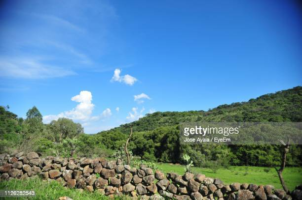 scenic view of landscape against blue sky - jose ayala stock pictures, royalty-free photos & images