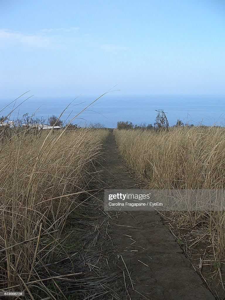 Scenic View Of Landscape Against Blue Sky : Foto stock