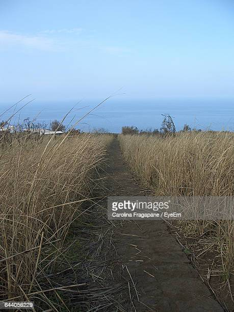 scenic view of landscape against blue sky - carolina fragapane stock pictures, royalty-free photos & images