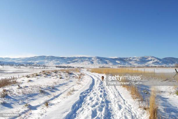 scenic view of landscape against clear blue sky - frank schrader stock pictures, royalty-free photos & images