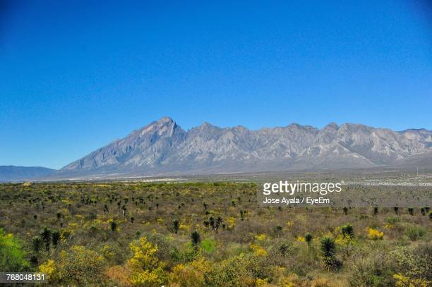 scenic view of landscape against clear blue sky - jose ayala fotografías e imágenes de stock