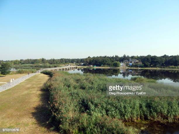 scenic view of landscape against clear blue sky - oleg prokopenko stock pictures, royalty-free photos & images