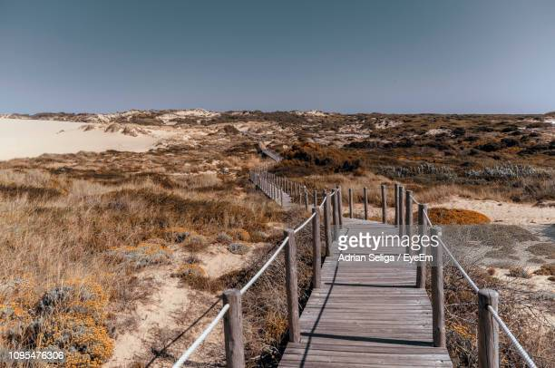 scenic view of landscape against clear sky - cascais stock photos and pictures