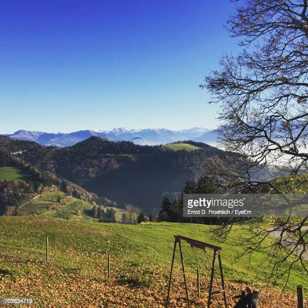 scenic view of landscape against clear sky - wald stock pictures, royalty-free photos & images
