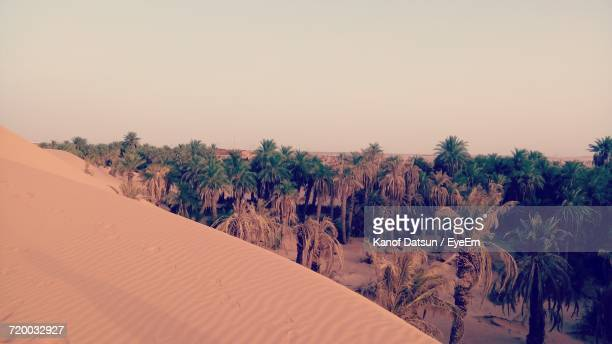 scenic view of landscape against clear sky - datsun stock pictures, royalty-free photos & images