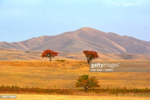 scenic view of landscape against clear sky - kyrgyzstan stock pictures, royalty-free photos & images