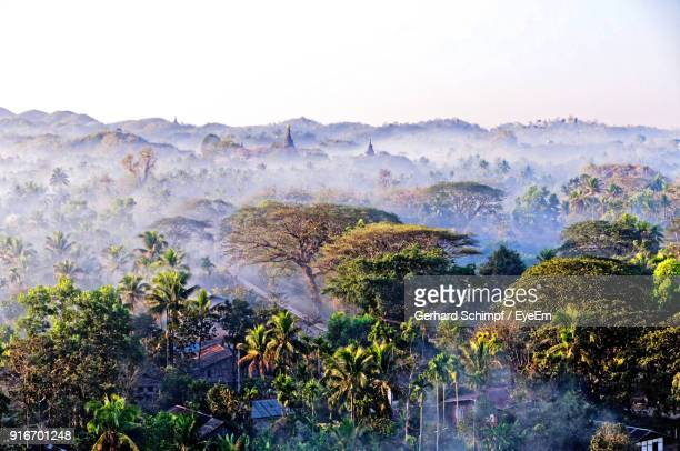 scenic view of landscape against clear sky - gerhard schimpf stock pictures, royalty-free photos & images