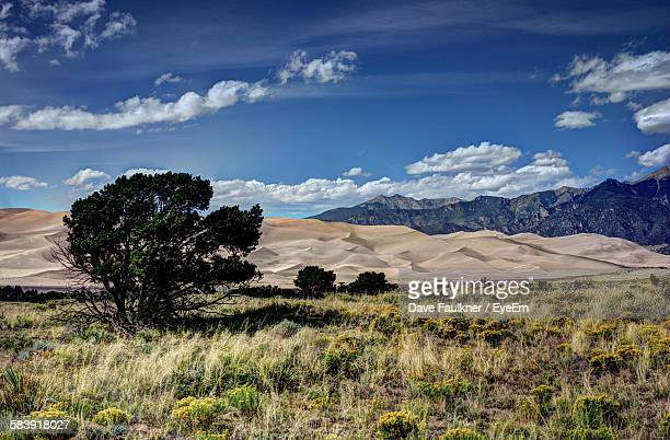 scenic view of landscape against cloudy blue sky - dave faulkner eye em stock pictures, royalty-free photos & images