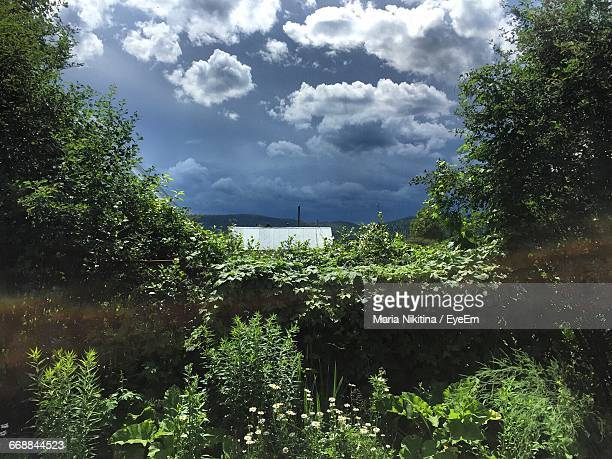 scenic view of landscape against cloudy sky - nikitina stock pictures, royalty-free photos & images