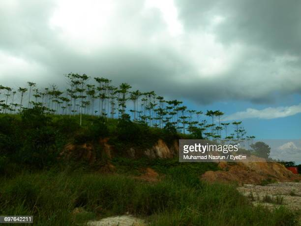 scenic view of landscape against cloudy sky - muhamad nasrun stock pictures, royalty-free photos & images