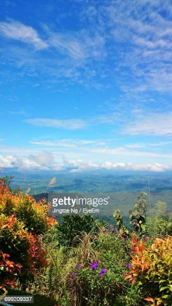scenic view of landscape against cloudy sky - sarawak state stock pictures, royalty-free photos & images