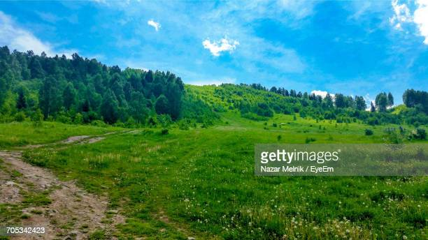 scenic view of landscape against cloudy sky - nazar stock photos and pictures