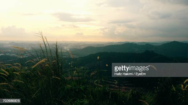 scenic view of landscape against sky at sunset - hakimi stock photos and pictures