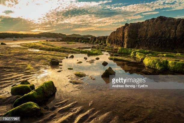 scenic view of landscape against sky at sunset - northumberland stock photos and pictures