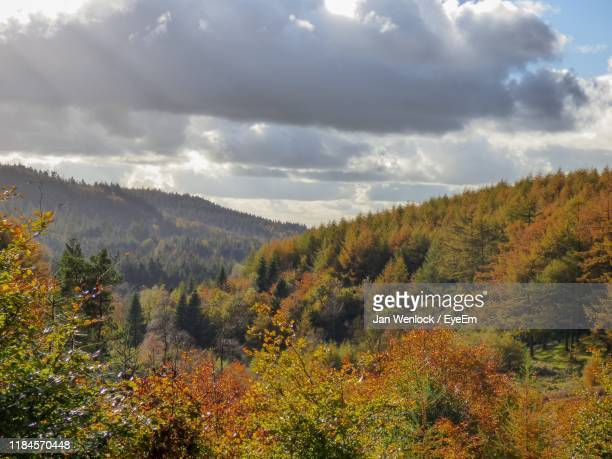 scenic view of landscape against sky during autumn - macclesfield stock pictures, royalty-free photos & images