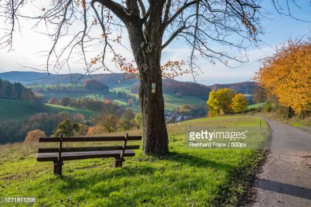 scenic view of landscape against sky during autumn, reichelsheim, germany - weg fotografías e imágenes de stock