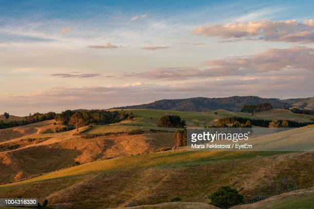 scenic view of landscape against sky during sunset - cambridge new zealand stock pictures, royalty-free photos & images