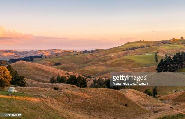 scenic view of landscape against sky during sunset - cambridge stock pictures, royalty-free photos & images