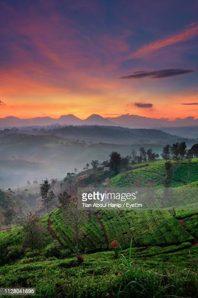 scenic view of landscape against sky during sunset - tian abdul hanip stock photos and pictures