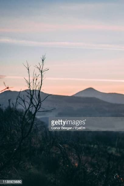 scenic view of landscape against sky during sunset - conor stock pictures, royalty-free photos & images