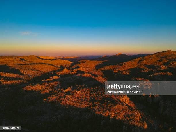 scenic view of landscape against sky during sunset - animals in the wild stock pictures, royalty-free photos & images