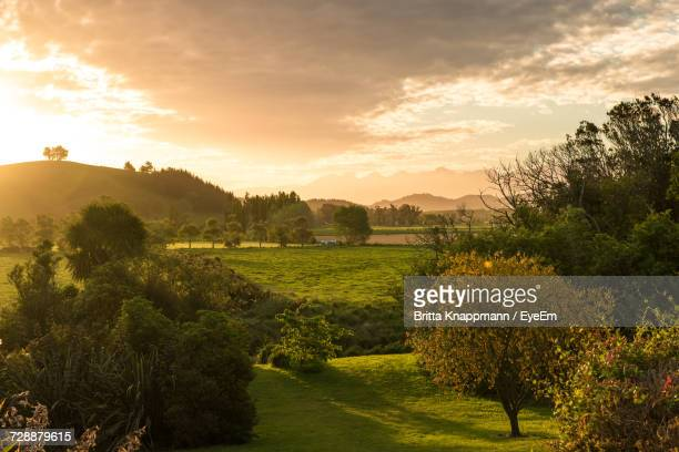 scenic view of landscape against sky during sunset - marlborough new zealand stock pictures, royalty-free photos & images