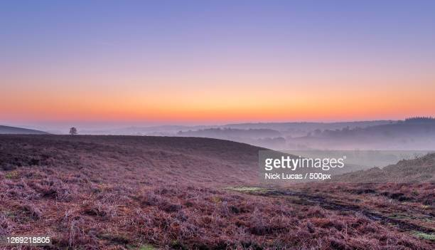 scenic view of landscape against sky during sunset, ringwood, united kingdom - images stock pictures, royalty-free photos & images