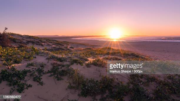 scenic view of landscape against sky during sunset,jeffreys bay,eastern cape,south africa - eastern cape stock pictures, royalty-free photos & images