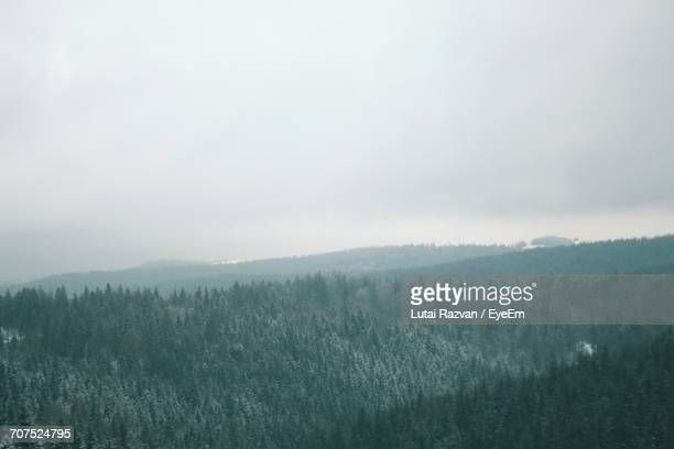 scenic view of landscape against sky during winter - lutai razvan stock pictures, royalty-free photos & images