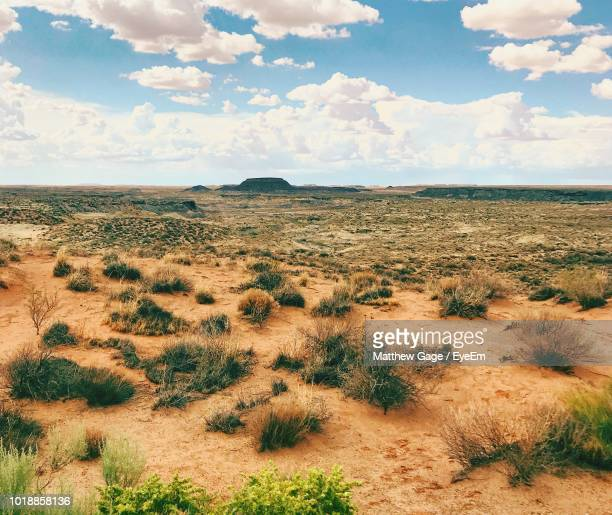 scenic view of landscape against sky - arizona desert stock pictures, royalty-free photos & images