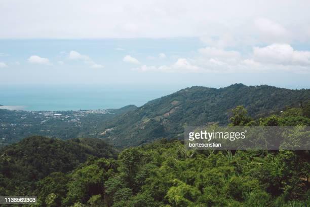 scenic view of landscape against sky - bortes cristian stock-fotos und bilder