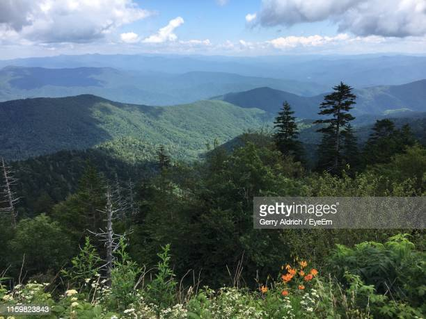 scenic view of landscape against sky - clingman's dome - fotografias e filmes do acervo